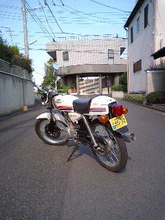 MA320038-0001.JPG