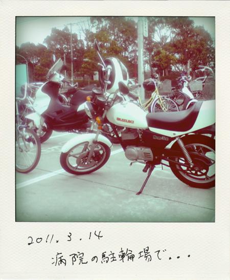 ST330240-pola01.jpg